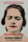 No-Signal Area: A Novel Cover Image