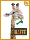 Giraffe (Spotlight on Nature) Cover Image