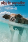 Pigs in Paradise: Pocket Pigs, Pigs Gifts, Office Supplies, Holidays, The Swimming Pigs in paradise 2020 Cover Image