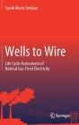 Wells to Wire: Life Cycle Assessment of Natural Gas-Fired Electricity Cover Image