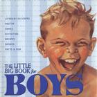 The Little Big Book for Boys Cover Image