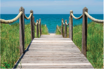 On Cape Cod Greeting Cards Cover Image