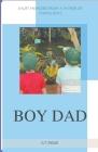 Boy Dad, Short Memoirs From a Father of Young Boys Cover Image