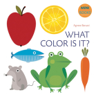 What Color Is It? (My First Book) Cover Image