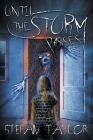 Until the Storm Passes Cover Image