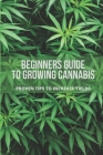 Beginners Guide To Growing Cannabis: Proven Tips To Increase Yields: Stages Of Growing Weed Cover Image