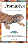 Uromastyx (Advanced Vivarium Systems) Cover Image