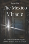 The Mexico Miracle: Our Son's Escape from Kidnappers and How We Found Peace in our Trials Cover Image