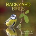 Backyard Birds Calendar 2021: 16 Month Calendar Cover Image