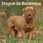 Dogue de Bordeaux 2020 Square Btuk Cover Image