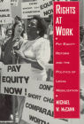 Rights at Work: Pay Equity Reform and the Politics of Legal Mobilization (Chicago Series in Law and Society) Cover Image