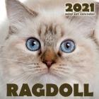 Ragdoll 2021 Mini Cat Calendar Cover Image