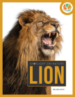 Lion (Spotlight on Nature) Cover Image