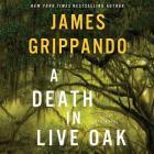 A Death in Live Oak: A Jack Swyteck Novel Cover Image