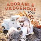 Adorable Hedgehogs 2022: 16-Month Calendar - September 2021 through December 2022 Cover Image