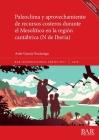 Paleoclima y aprovechamiento de recursos costeros durante el Mesolítico en la región cantábrica (N de Iberia) (BAR International #2977) Cover Image