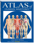 Atlas of Human Anatomy (Quickstudy Books) Cover Image