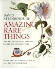 Amazing Rare Things: The Art of Natural History in the Age of Discovery Cover Image