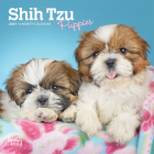 Shih Tzu Puppies 2021 Mini 7x7 Cover Image