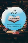 Like What We Imagine: Writing and the University (Composition, Literacy, and Culture) Cover Image