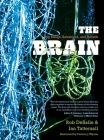 The Brain: Big Bangs, Behaviors, and Beliefs Cover Image