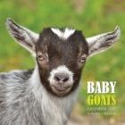 Baby Goats Calendar 2020: 16 Month Calendar Cover Image