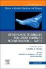 Orthoplastic Techniques for Lower Extremity Reconstruction - Part II, an Issue of Clinics in Podiatric Medicine and Surgery, 38 (Clinics: Orthopedics #38) Cover Image