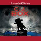 Dark Sky (Joe Pickett #21) Cover Image