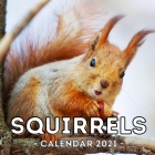 Squirrels Calendar 2021: 16-Month Calendar, Cute Gift Idea For Squirrels Lovers Women & Men Cover Image