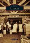 Lindsay Cover Image