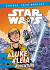 A Luke & Leia Adventure Cover Image