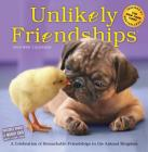Unlikely Friendships Mini Wall Calendar 2019 Cover Image