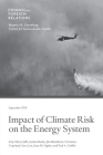 Impact of Climate Risk on the Energy System: Examining the Financial, Security, and Technology Dimensions Cover Image