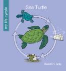 Sea Turtle Cover Image