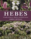 Hebes: A Guide to Species, Hybrids, and Allied Genera Cover Image