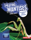 Praying Mantises: An Augmented Reality Experience Cover Image