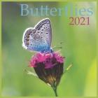 2021 Butterflies: 2021 Wall & Office Calendar, 12 Month Calendar Cover Image