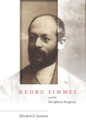 Georg Simmel and the Disciplinary Imaginary Cover Image