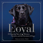 Loyal: 38 Inspiring Tales of Bravery, Heroism, and the Devotion of Dogs Cover Image
