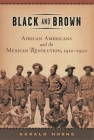 Black and Brown: African Americans and the Mexican Revolution, 1910-1920 (American History and Culture #9) Cover Image