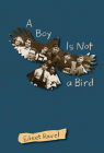 A Boy Is Not a Bird Cover Image