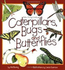 Caterpillars, Bugs and Butterflies: Take-Along Guide (Take-Along Guides) Cover Image