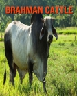 Brahman Cattle: Learn About Brahman Cattle and Enjoy Colorful Pictures Cover Image