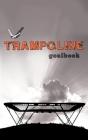 Trampoline Gymnastics Goalbook #16: Competitive Trampolining: Mens Cover Image