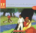 If You Traveled on the Underground Railroad Cover Image