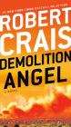 Demolition Angel: A Novel Cover Image