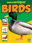 Birds (Learn to Fold Origami) Cover Image