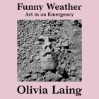 Funny Weather: Art in an Emergency Cover Image