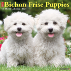 Just Bichon Frise Puppies 2021 Wall Calendar (Dog Breed Calendar) Cover Image