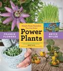 Power Plants: Simple Home Remedies You Can Grow Cover Image
